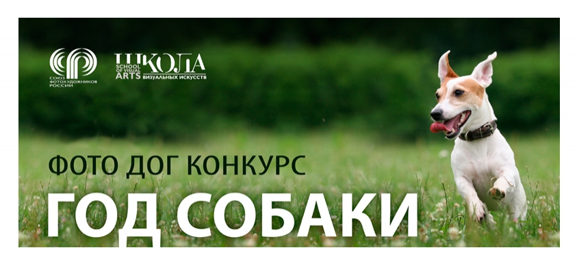 Всероссийский конкурс фотографии