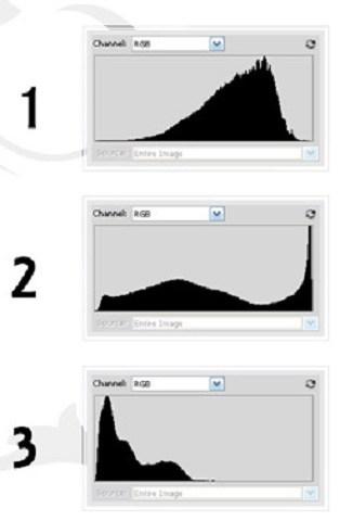 Используя гистограмму, можно создавать любые фотографии, в том числе нетипичные или идеально сбалансированные