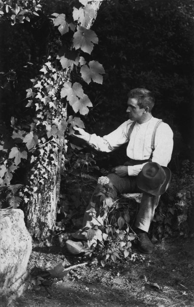 Карл Блоссфельд - фотограф на стыке науки и искусства