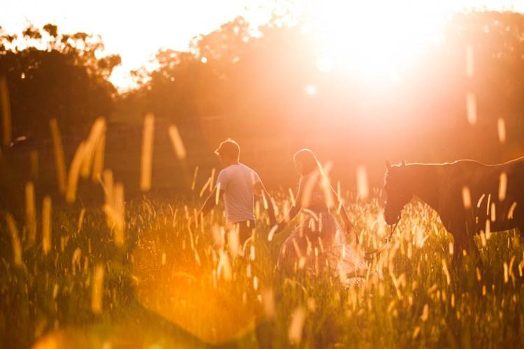 Вы можете видеть в примере ниже, как солнечный свет просачивается сквозь деревья или частично заслоняется линией дерева.