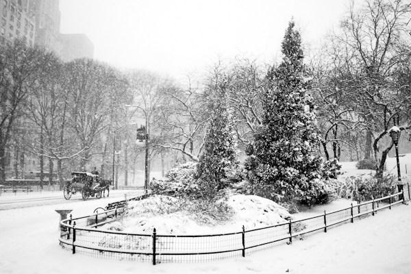 5 необычных советов по снежной фотографии, которые могут изменить зимние снимки