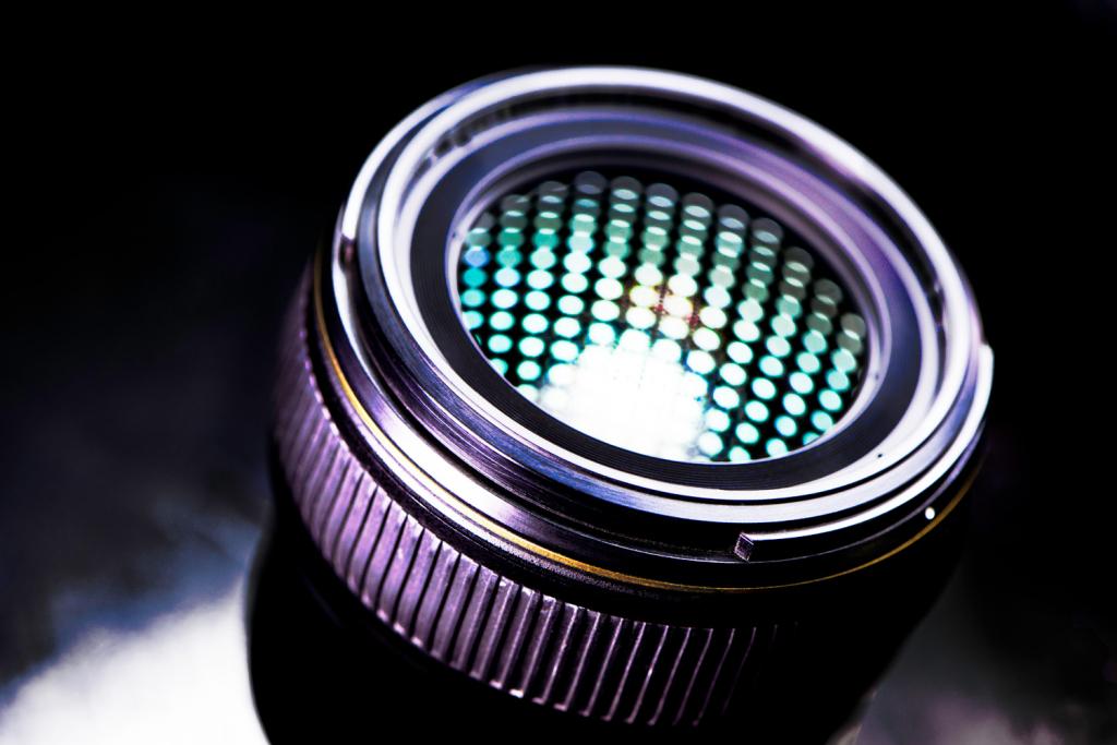 Как защитить камеру и объектив от повреждения грибком