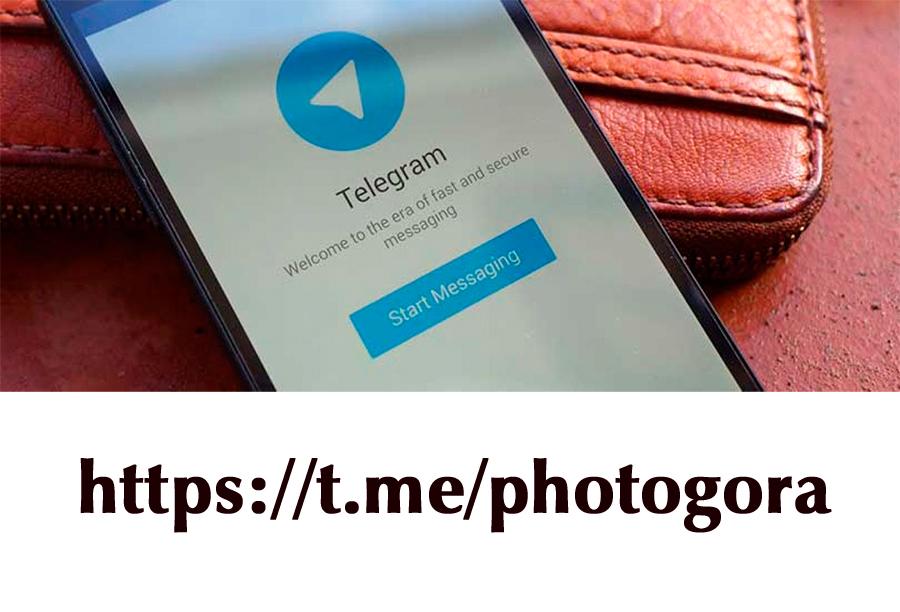 канал блога в Телеграме