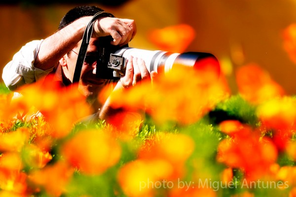 Я и мой любимый объектив для цветочных фотографий