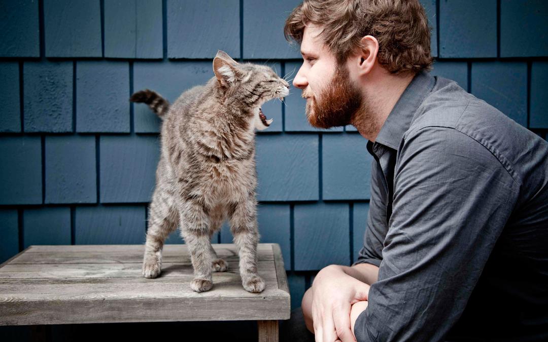 9 простых советов для любителей пофотографировать домашних животных