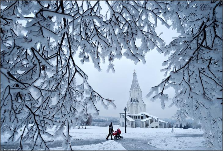 ©Dima Zverev
