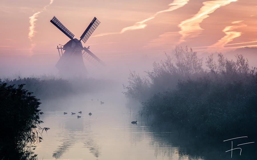 Как фотографировать в туман, или Романтика легкой дымки