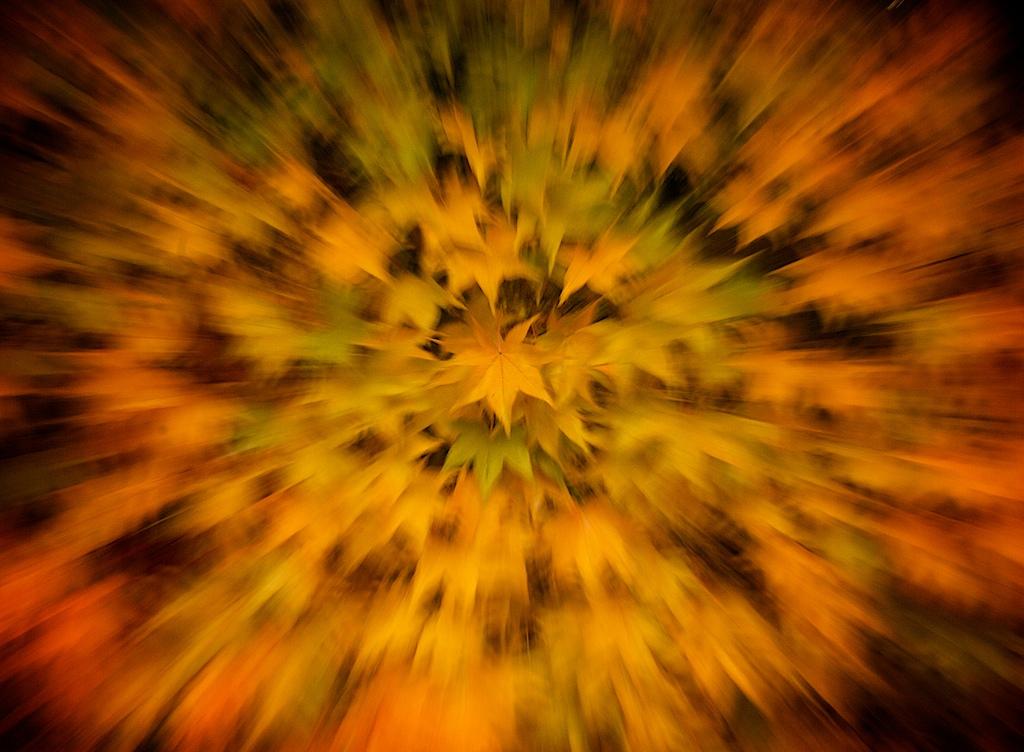 что такое zoom blur