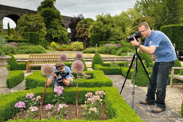 как сделать красивую фотографию цветов