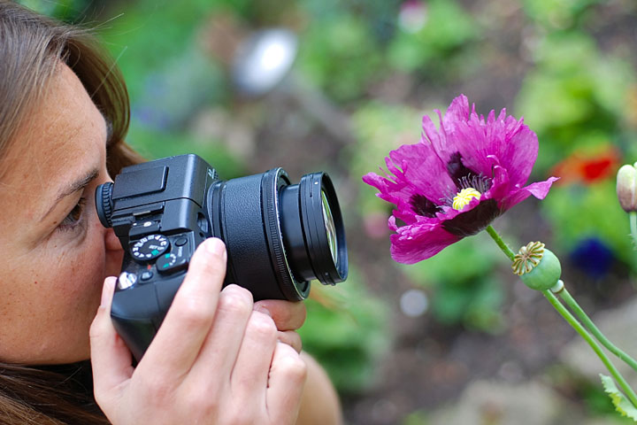 Топ-10 советов для фотографов-флористов