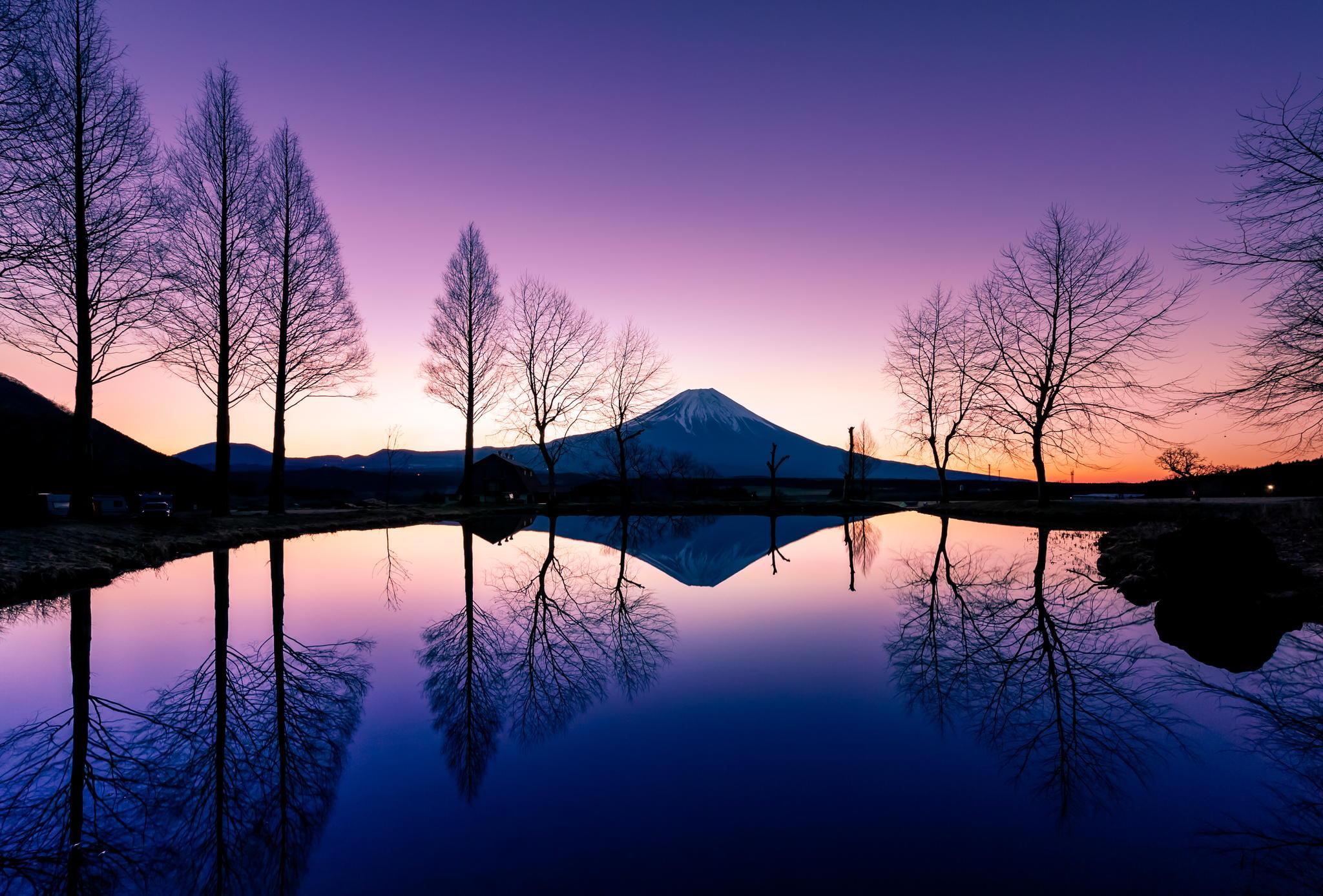 by Yasuhiko Yarimizu