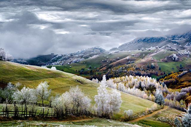 by Eduard Gutescu