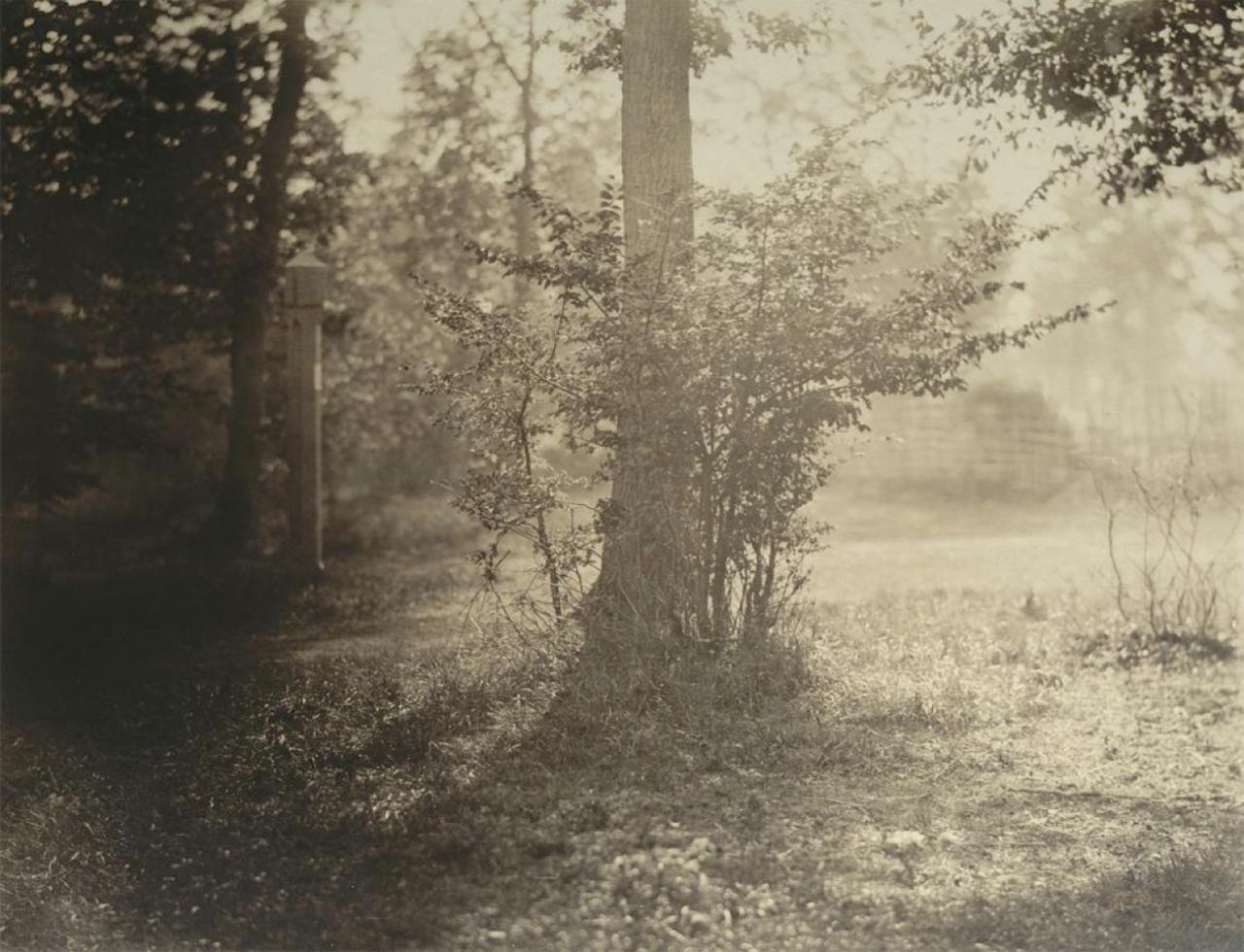 фотоснимки Ж.-Б. Г. Ле Гре
