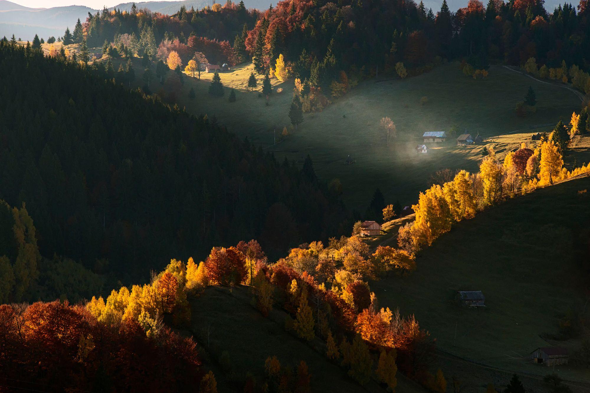 by Mihail Dulu